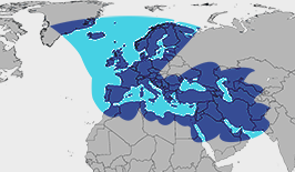 Europe, Middle East, Atlantic